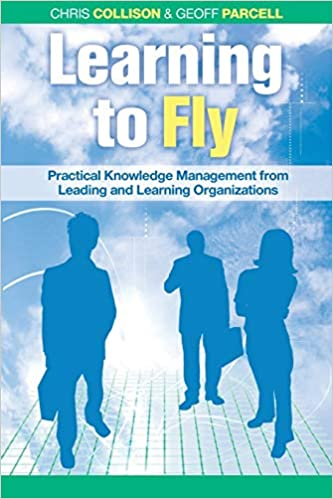 Learning to Fly book cover